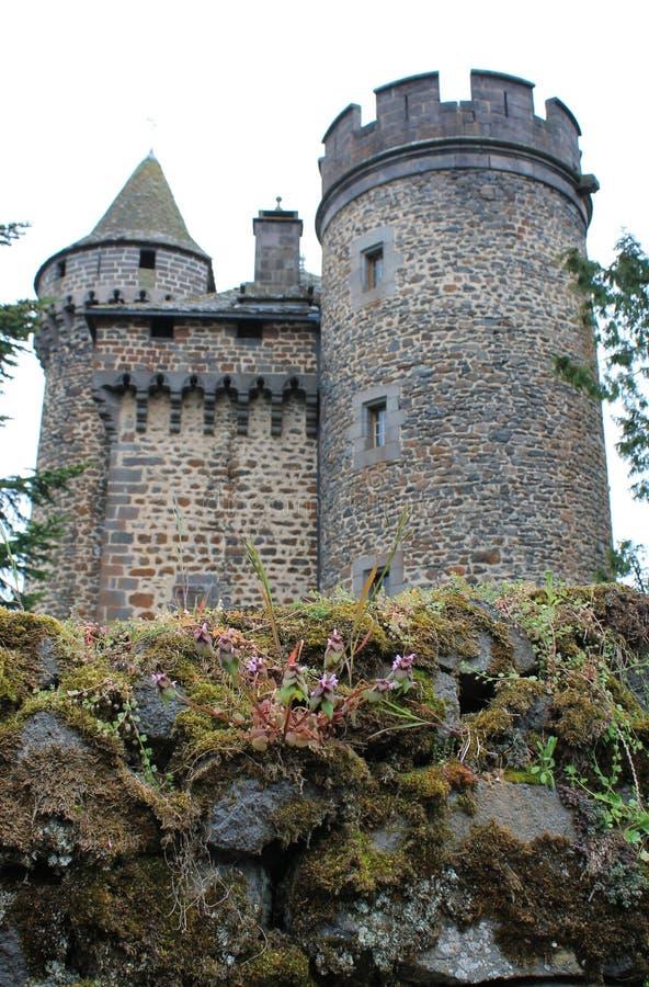 大别墅des镀铅锡铁板,康塔尔省(法国) 库存照片