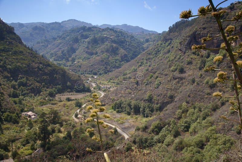 大加那利岛,沿陡峭的谷的看法往Las Cumbres 库存图片