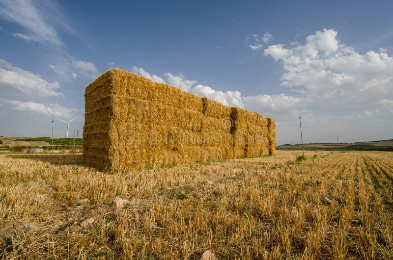 大包在harvesti以后fied的agricltural的干黄色秸杆 免版税图库摄影