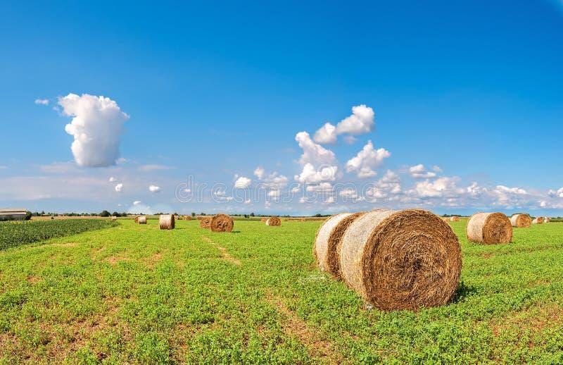 大包领域干草夏天 农村的横向 库存照片