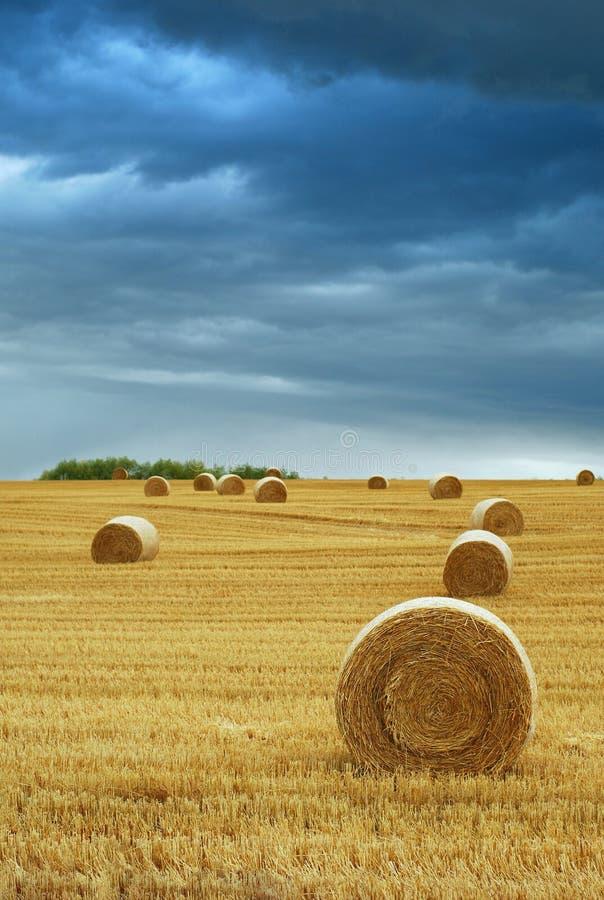 大包领域风雨如磐干草的天空 免版税库存照片