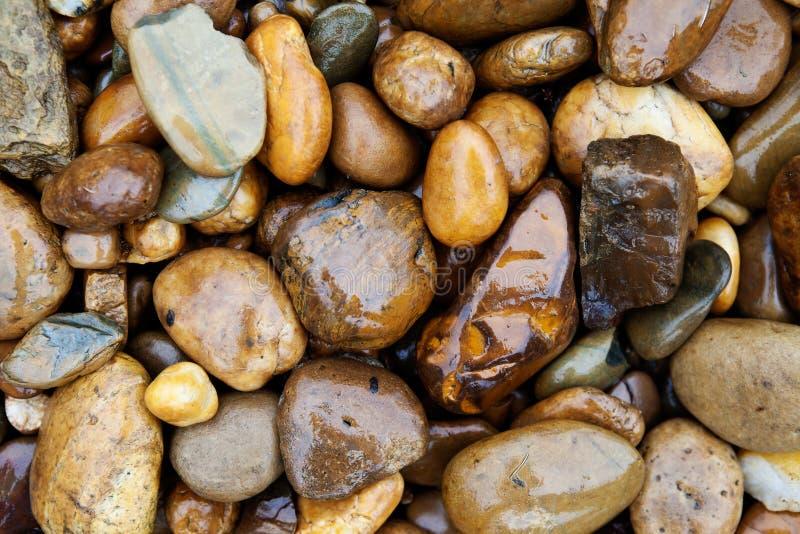大卵石在雨中 库存照片