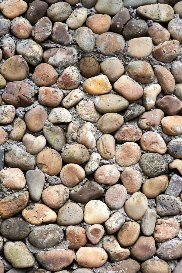 大卵石墙壁 库存图片