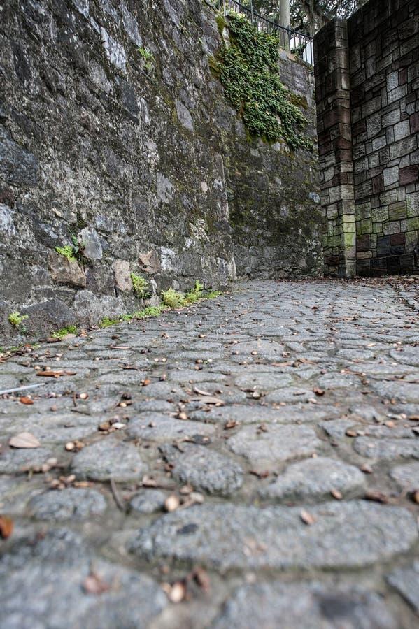 大卵石石头街道 库存图片