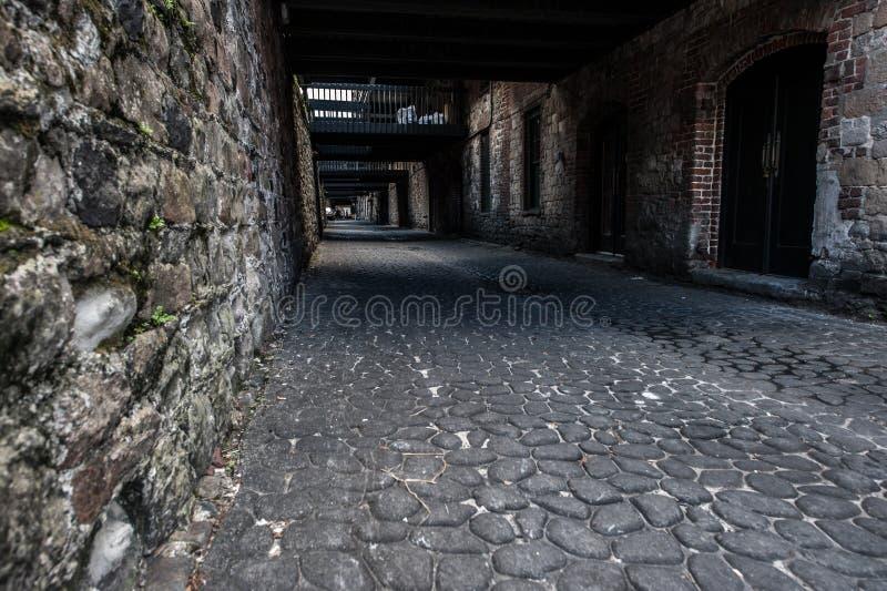 大卵石石头街道 库存照片