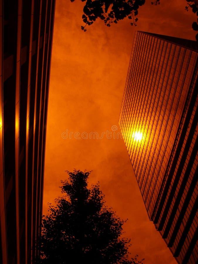 大厦反映台阶星期日 免版税库存照片