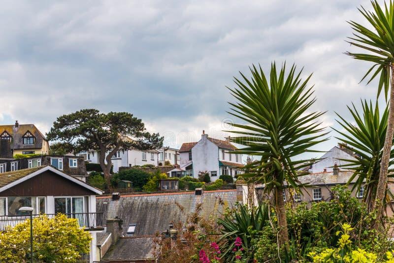 大厦和异乎寻常的植物,从看见的海边斑点屋顶  免版税图库摄影