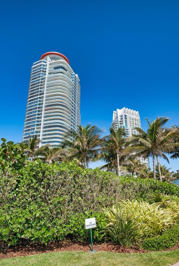 大厦和树在南Pointe公园,迈阿密海滩 图库摄影