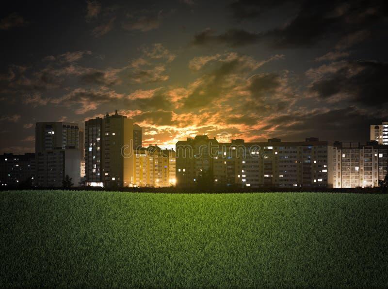 大厦和绿草领域 库存图片