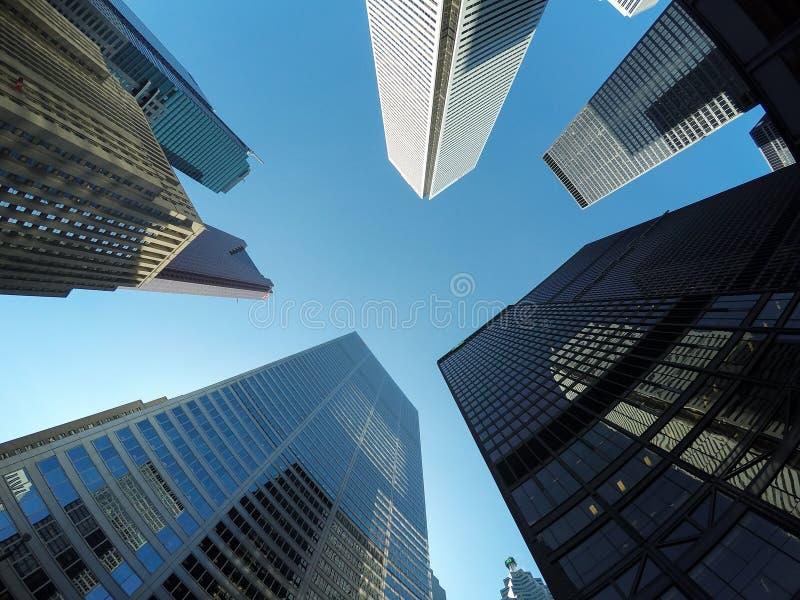 大厦在街市多伦多 免版税库存照片
