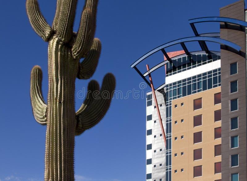 大厦现代沙漠的旅馆 免版税库存照片