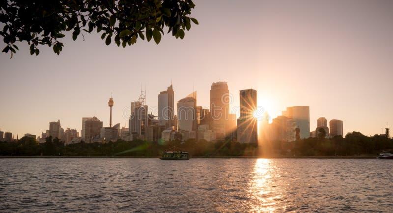大厦看法在悉尼市,在日落时间在夏天ho 库存照片