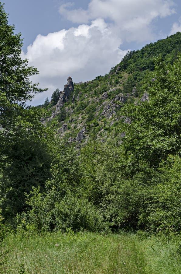 大和合格的岩石类似人、野兽和峰顶Garvanets或掠夺的其他异常的形式 免版税库存照片