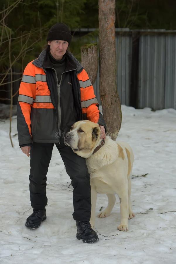 大品种流浪狗的避难所  有alabai的避难所雇员 免版税库存图片