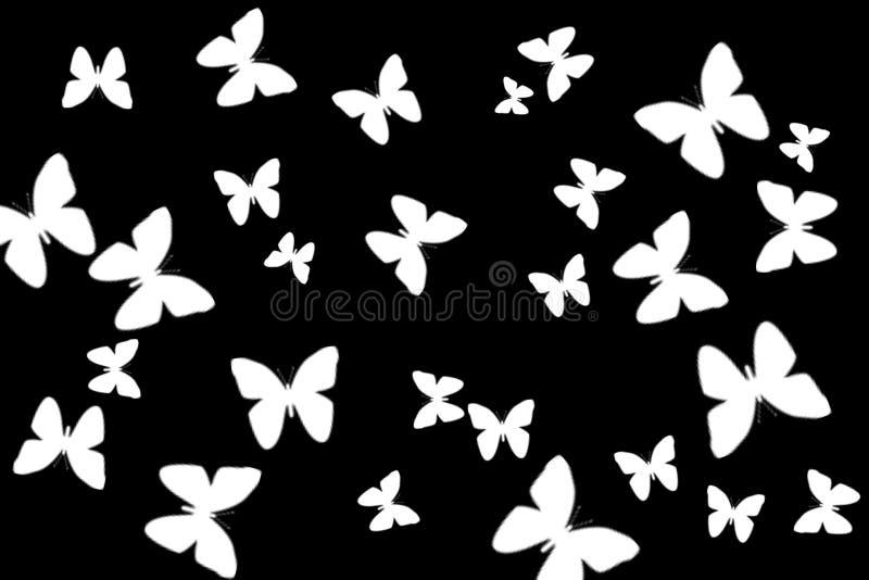 大在黑色的汇集剪影白色蝴蝶 库存图片