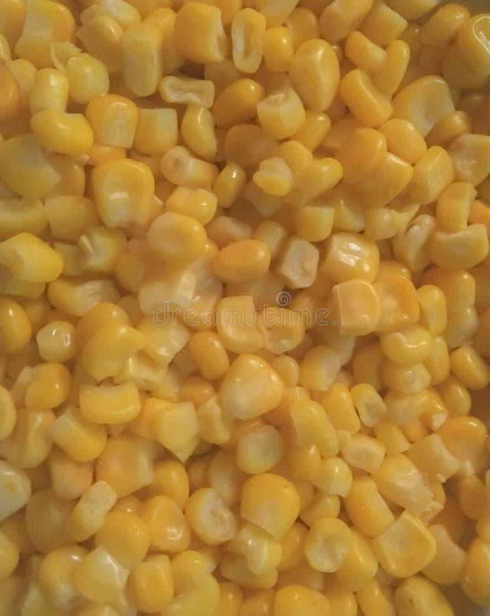 大块黄色玉米五谷纹理 图库摄影