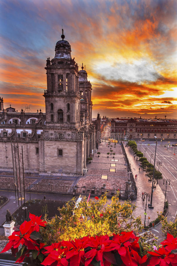 大城市大教堂圣诞节Zocalo墨西哥城墨西哥日出 免版税库存图片