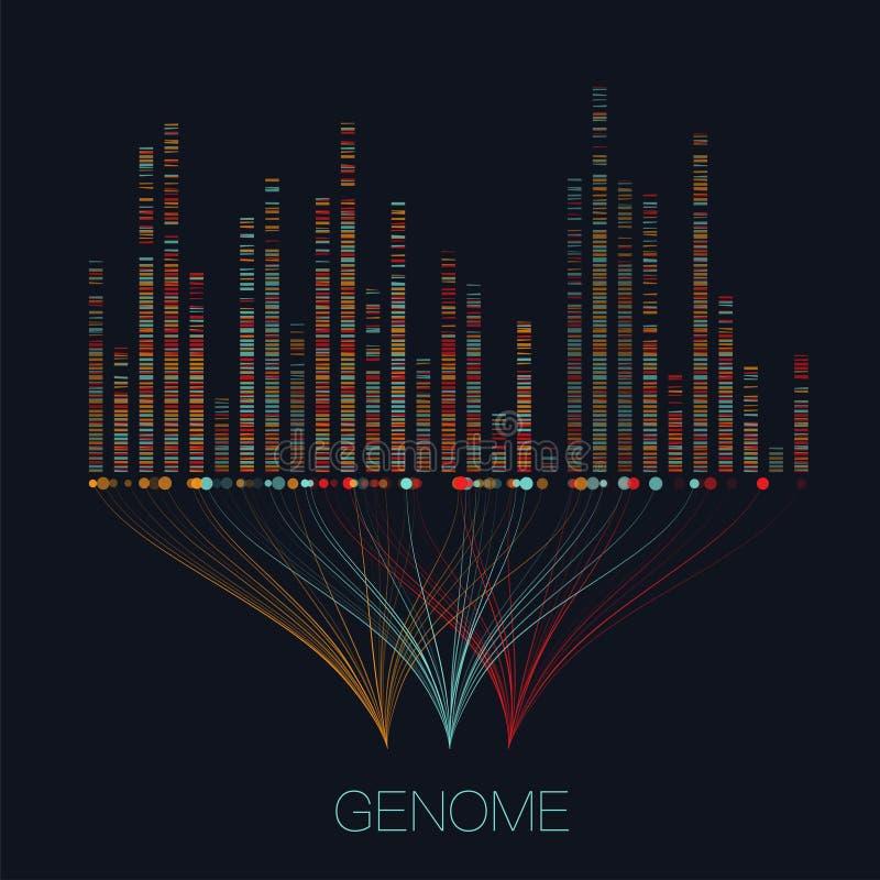 大基因组数据形象化 向量例证