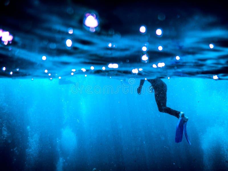 大堡礁佩戴水肺的潜水 库存图片