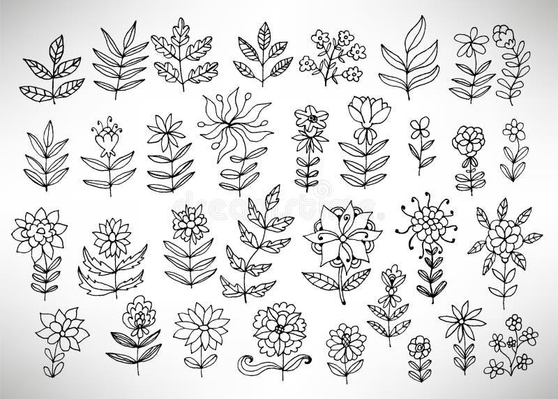大套手拉的稀薄的线黑色脏的乱画花卉象,分支,植物,瓣,幻想花 向量例证
