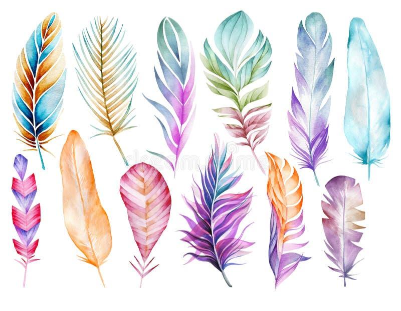 大套鸟多彩多姿的羽毛  画开花的河结构树水彩绕的银行 向量例证