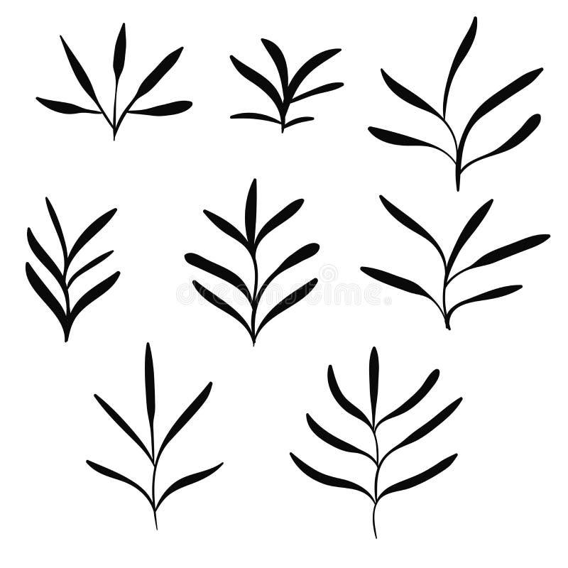 大套黑手拉的稀薄的线逗人喜爱的乱画花卉象,花,植物 向量例证