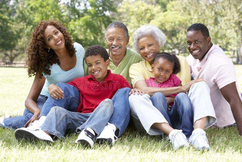 大家庭组公园纵向 免版税库存图片