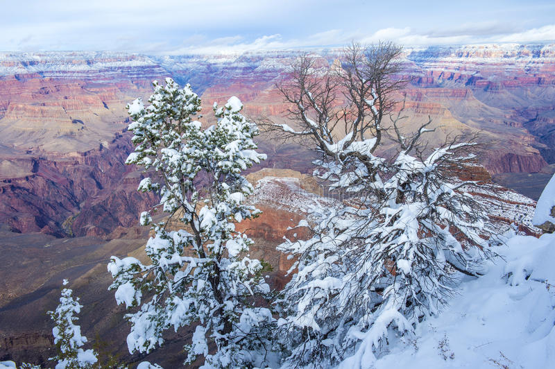 Download 大峡谷 库存图片. 图片 包括有 岩石, 俯视, 吸引力, 美丽如画, arizonian, 本质, 地质 - 30328033