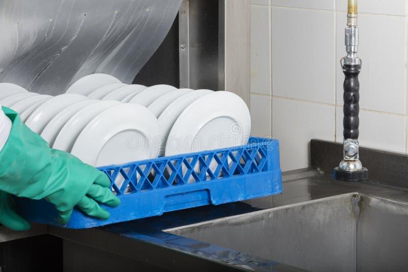 大工业厨房洗碗机 图库摄影