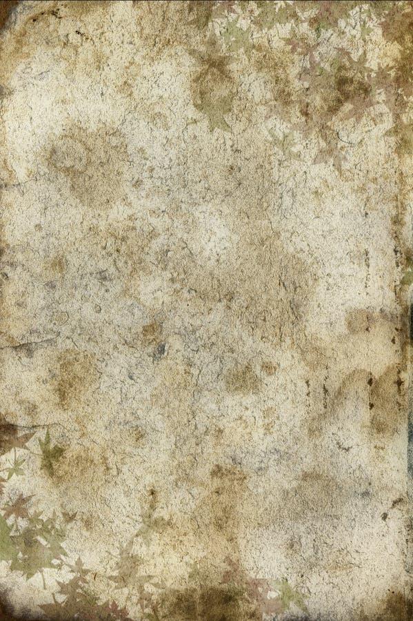 大张纸葡萄酒 免版税库存照片