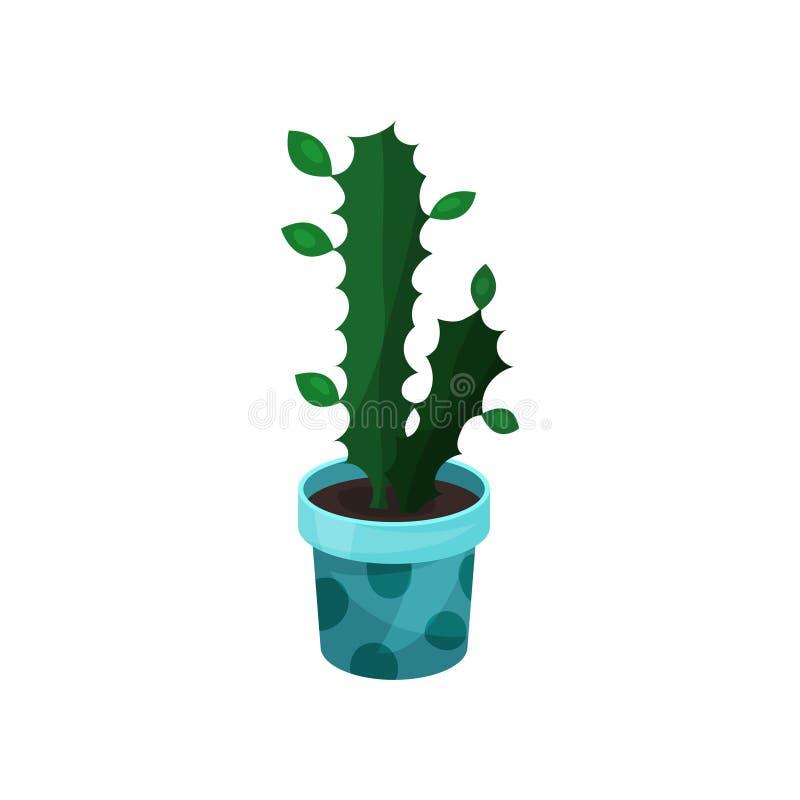 大戟属室内植物,盆的植物传染媒介例证 皇族释放例证