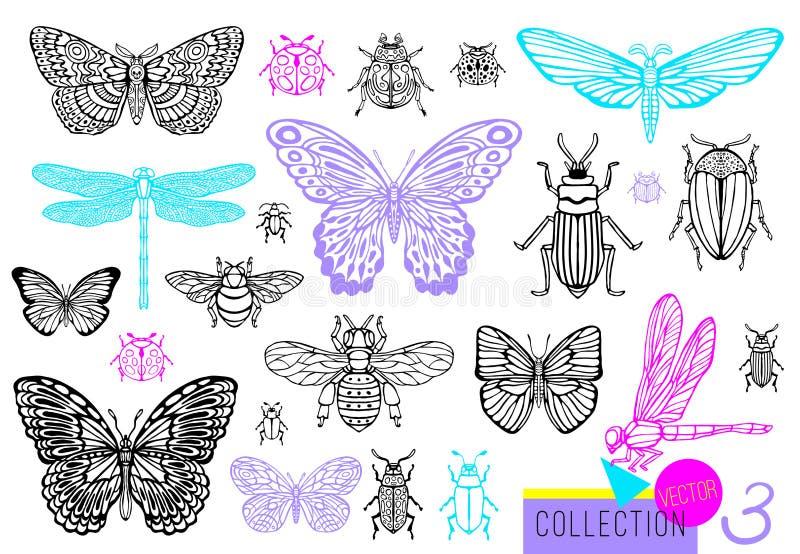 大手拉的线昆虫臭虫,甲虫,蜂蜜蜂,蝴蝶飞蛾,土蜂,黄蜂,蜻蜓,蚂蚱套  皇族释放例证
