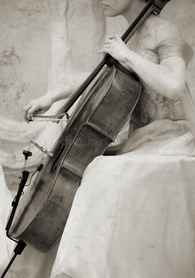 大提琴葡萄酒 库存图片