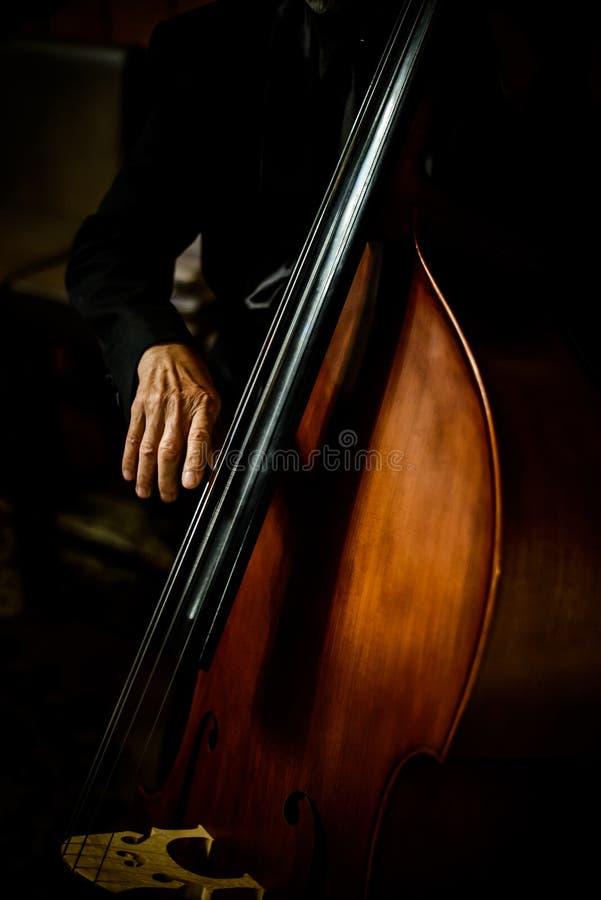 大提琴乐器大提琴手使用 免版税库存照片