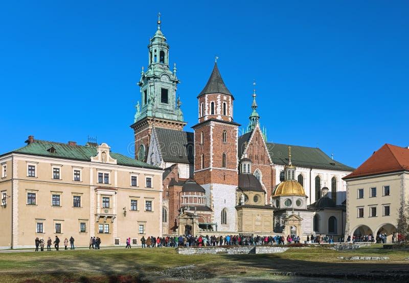 大教堂克拉科夫波兰wawel 免版税图库摄影