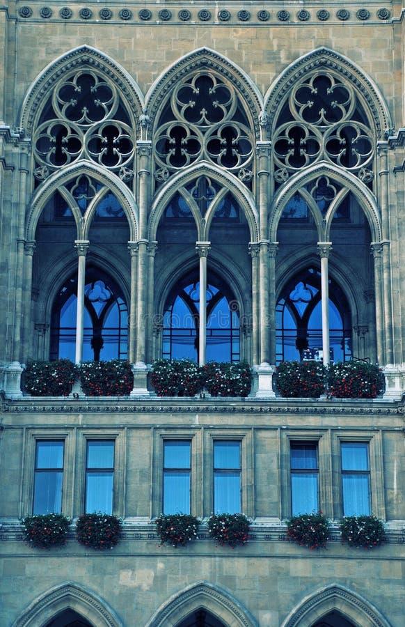 大教堂哥特式维也纳视窗 免版税库存照片