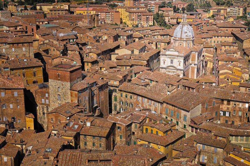 大教堂意大利屋顶siena冠上托斯卡纳视图 免版税库存图片