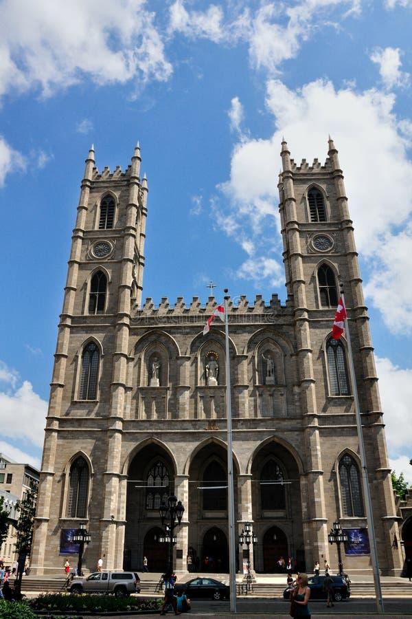 大教堂蒙特利尔贵妇人notre 免版税库存照片