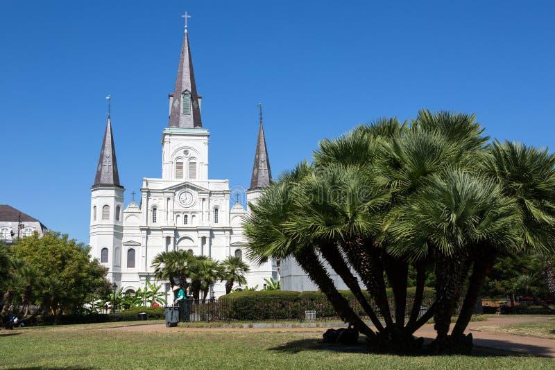 大教堂路易斯圣徒 免版税库存照片