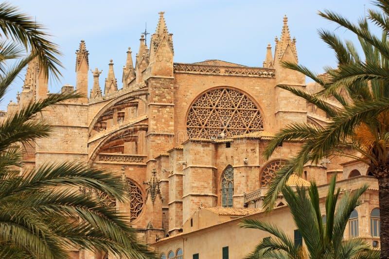 大教堂de la mallorca palma seu 库存图片
