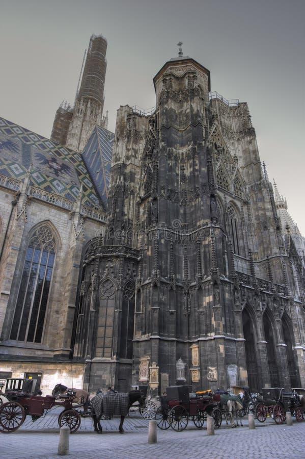 大教堂st stephens维也纳 图库摄影