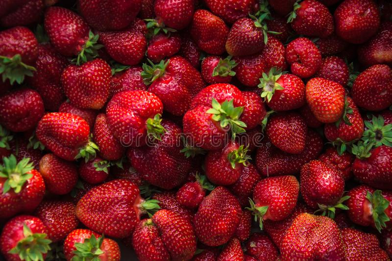大新草莓集合突然上升了接近 Res莓果 免版税库存照片