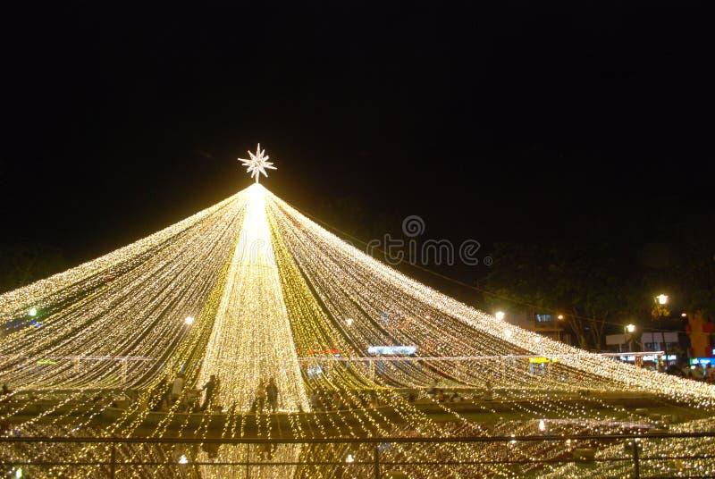 大星圣诞灯 库存照片
