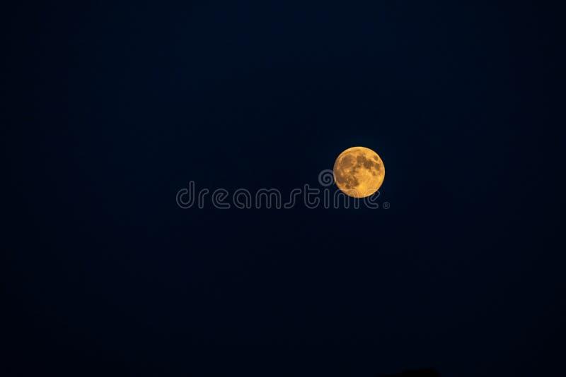 大月亮它与详细的火山口可看见在它的边缘,全部的充分的阶段在黑背景中 免版税库存图片