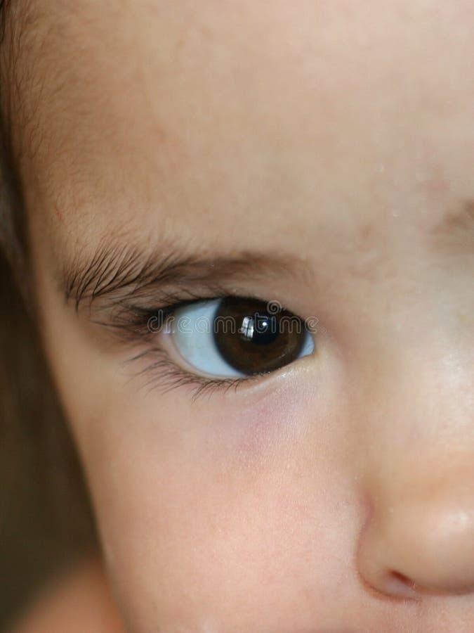 大棕色眼睛 免版税图库摄影