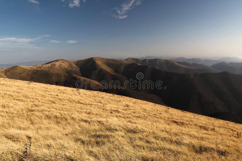 大横向山山 喀尔巴阡山脉和美丽的森林的看法 库存图片