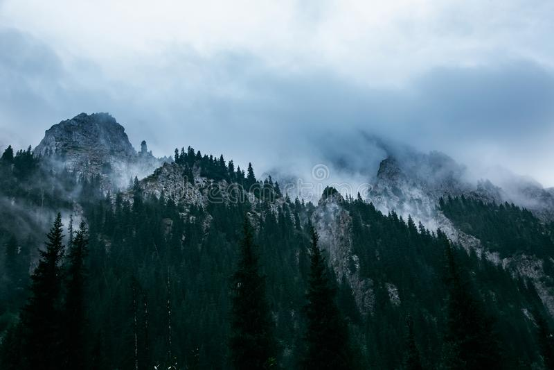 大横向山山 阿尔玛蒂 河的谷Talgar 卡扎克斯坦 免版税库存照片