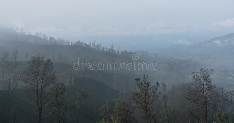 大气污染,在森林的烟雾临近kawah伊真火山火山在印度尼西亚 免版税库存照片