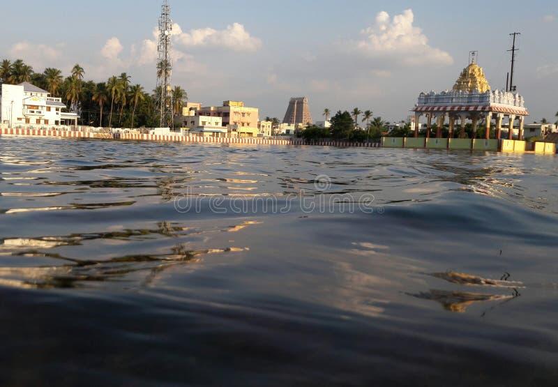大池游泳 图库摄影