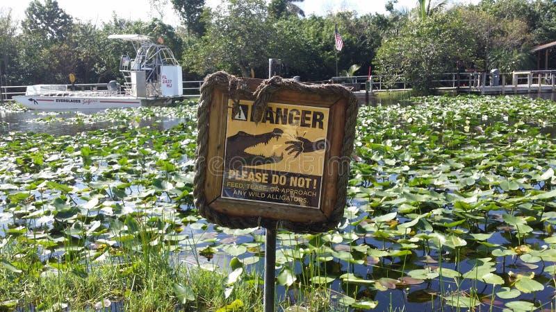 大沼泽地国家公园,迈阿密 佛罗里达 免版税库存图片